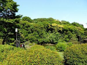 細川家下屋敷の回遊式泉水庭園