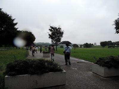 雨の武蔵野の森公園。これから先に何があるか誰も分かっていない
